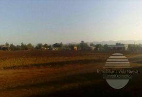 Foto de terreno habitacional en venta en  , hidalgo, mexicali, baja california, 0 No. 01