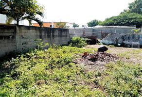 Foto de terreno habitacional en venta en  , hidalgo poniente, ciudad madero, tamaulipas, 19180125 No. 01