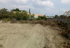 Foto de terreno habitacional en venta en hidalgo , santa maría tequepexpan, san pedro tlaquepaque, jalisco, 6255846 No. 01