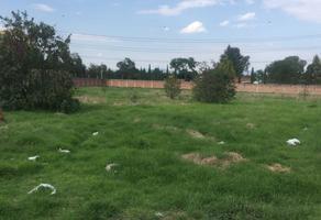 Foto de terreno habitacional en venta en hidalgo s/n , san salvador, toluca, méxico, 14971428 No. 01