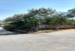 Foto de terreno habitacional en venta en hidalgo sur , tlaltizapan de pacheco, tlaltizapán de zapata, morelos, 19413752 No. 01