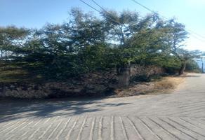 Foto de terreno habitacional en venta en hidalgo sur , tlaltizapan de pacheco, tlaltizapán de zapata, morelos, 19428978 No. 01