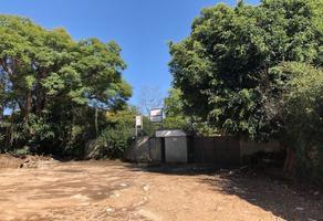 Foto de terreno habitacional en venta en himalaya , lomas de chapultepec ii sección, miguel hidalgo, df / cdmx, 19246285 No. 01