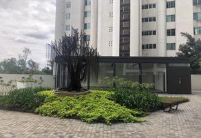 Foto de departamento en renta en hipodromo 2077, colomos providencia, guadalajara, jalisco, 15555835 No. 01