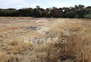 Foto de terreno habitacional en venta en hiuchapan-tequisquiapan , hacienda grande, tequisquiapan, querétaro, 12155071 No. 01