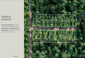 Foto de terreno habitacional en venta en holistika , la veleta, tulum, quintana roo, 0 No. 01