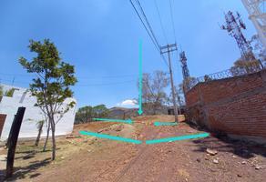 Foto de terreno habitacional en venta en hormiguero , guanajuato centro, guanajuato, guanajuato, 0 No. 01