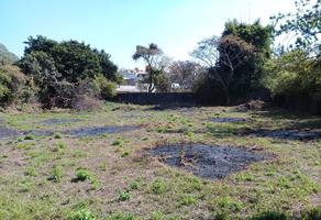 Foto de terreno habitacional en venta en  , huachinantilla, tepoztlán, morelos, 17766782 No. 01