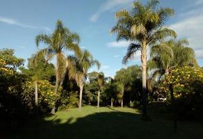 Foto de terreno habitacional en venta en  , huachinantilla, tepoztlán, morelos, 6707365 No. 01