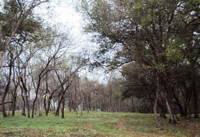 Foto de terreno habitacional en venta en huajuquito , huajuquito, santiago, nuevo león, 16791626 No. 01