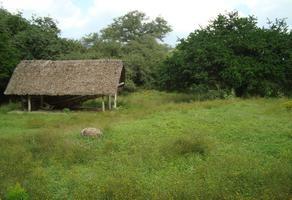 Foto de rancho en venta en  , huajuquito o los cavazos, santiago, nuevo león, 18447800 No. 01