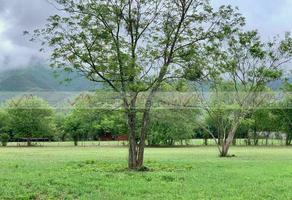 Foto de terreno comercial en venta en  , huajuquito o los cavazos, santiago, nuevo león, 0 No. 01