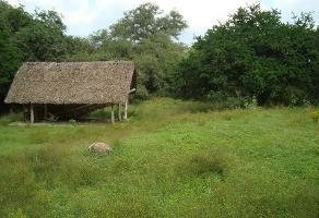 Foto de casa en venta en  , huajuquito, santiago, nuevo león, 11790093 No. 01