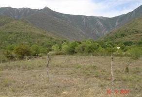Foto de terreno habitacional en venta en  , huajuquito, santiago, nuevo león, 11802306 No. 01