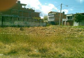 Foto de terreno habitacional en venta en huancito , san isidro itzícuaro, morelia, michoacán de ocampo, 0 No. 01