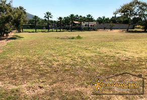 Foto de terreno habitacional en venta en huaquechula 176, el paraíso, huaquechula, puebla, 16326891 No. 01