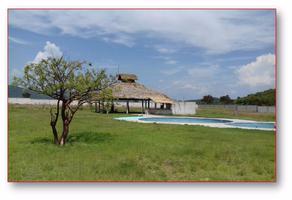 Foto de terreno habitacional en venta en  , huaquechula, huaquechula, puebla, 12249217 No. 01