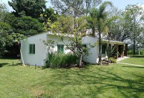 Foto de rancho en renta en  , huaxtla, el arenal, jalisco, 5746162 No. 01