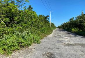 Foto de terreno habitacional en venta en huayacán 1, cancún (internacional de cancún), benito juárez, quintana roo, 19972668 No. 01