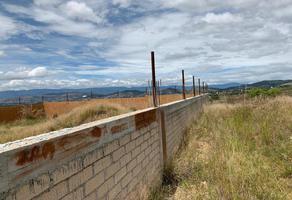 Foto de terreno habitacional en venta en huayapam 1, san andres huayapam, san andrés huayápam, oaxaca, 0 No. 01