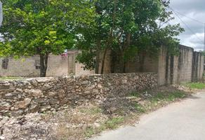 Foto de terreno habitacional en venta en  , huayita, tizimín, yucatán, 0 No. 01