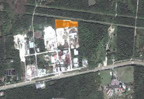 Foto de terreno habitacional en venta en  , huaypix, othón p. blanco, quintana roo, 13198056 No. 01