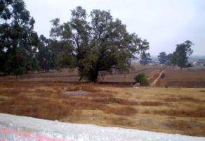 Foto de terreno habitacional en venta en  , huehuetoca, huehuetoca, méxico, 11842301 No. 01