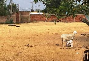Foto de terreno habitacional en renta en  , huentitán el bajo, guadalajara, jalisco, 7008408 No. 01