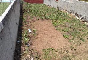 Foto de terreno habitacional en venta en  , huertas de san pedro, huitzilac, morelos, 0 No. 01