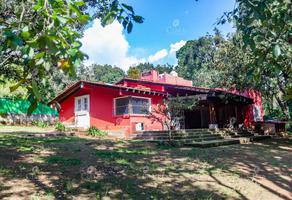 Foto de casa en venta en  , huertas de san pedro, huitzilac, morelos, 20176229 No. 01