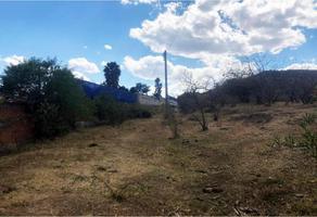 Foto de terreno habitacional en venta en huertas san josé 9, santa cruz tehuispango, atlixco, puebla, 19399539 No. 01