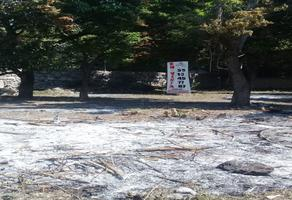 Foto de terreno habitacional en venta en  , huertos de ticuman, tlaltizapán de zapata, morelos, 16337389 No. 01