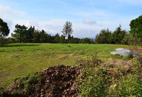 Foto de terreno habitacional en venta en  , huitzilac, huitzilac, morelos, 17806358 No. 01