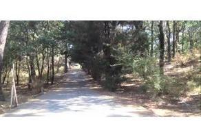 Foto de terreno habitacional en venta en  , huitzilac, huitzilac, morelos, 18433364 No. 01