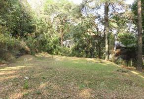 Foto de terreno habitacional en venta en huitzilac, morelos t41, san josé de la montaña, huitzilac, morelos, 19469071 No. 01