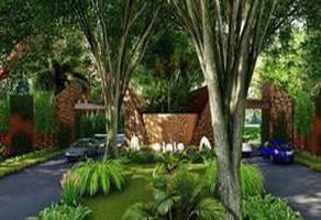 Foto de terreno habitacional en venta en  , huncanab, hunucmá, yucatán, 0 No. 01