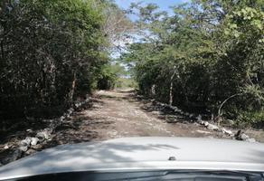 Foto de terreno habitacional en venta en - -, hunucmá, hunucmá, yucatán, 0 No. 01