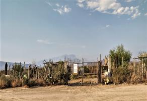 Foto de terreno habitacional en venta en  , icamole, garcía, nuevo león, 0 No. 01