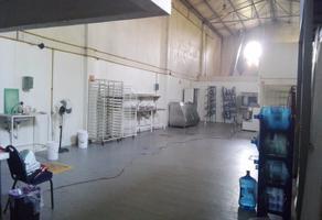 Foto de nave industrial en renta en ignacio allende 98 , real de sabina, centro, tabasco, 14818113 No. 01