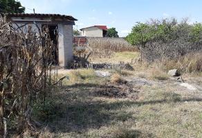 Foto de terreno habitacional en venta en ignacio gómez 2249 a, la palmira, zapopan, jalisco, 5194773 No. 01