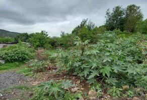 Foto de terreno habitacional en venta en ignacio lopez rayón , el cerrito, morelia, michoacán de ocampo, 0 No. 01
