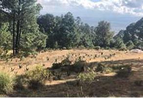 Foto de terreno comercial en venta en ignacio rayón. ejido el tejocote , santiago miltepec, toluca, méxico, 0 No. 01
