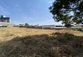 Foto de terreno comercial en venta en  , ignacio romero vargas, puebla, puebla, 0 No. 01
