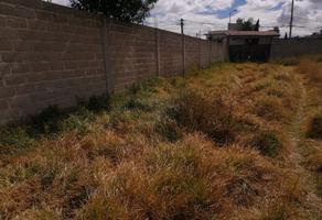 Foto de terreno habitacional en venta en indepencia 62, san miguel, metepec, méxico, 0 No. 01