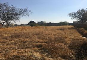 Foto de terreno habitacional en venta en independencia 10, san felipe tlalmimilolpan, toluca, méxico, 0 No. 01