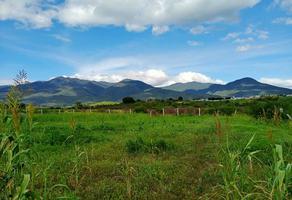 Foto de terreno habitacional en venta en independencia 3 , san juan bautista guelache, san juan bautista guelache, oaxaca, 16310629 No. 01