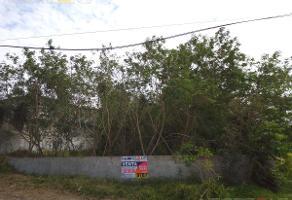 Foto de terreno habitacional en venta en  , independencia, altamira, tamaulipas, 12283898 No. 01