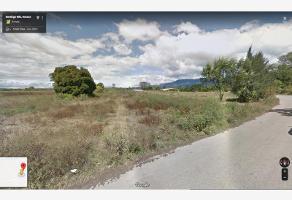 Foto de terreno habitacional en venta en independencia , el trapiche, san lorenzo cacaotepec, oaxaca, 10235500 No. 01