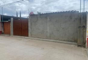 Foto de terreno habitacional en venta en independencia , santa maria del tule, santa maría del tule, oaxaca, 0 No. 01