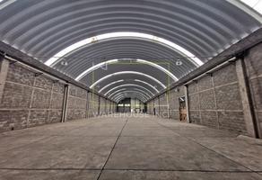 Foto de nave industrial en renta en  , industrial chalco, chalco, méxico, 17886845 No. 01